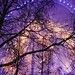 2019 London NYE - Blue bursts all around
