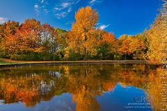 Reflection Of Autumn (Ghulam Rasool Photography) Tags: trees leaves orange yellow morning nature ghulamrasool water lake sky colors fall autumn park beckton newham landscape photography london