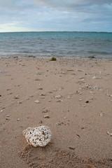 Stone on sand (ALOHA de HAWAII) Tags: alamoanabeachpark