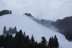 RSC Schneeschuhtour 2019 33