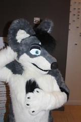 IMG_8981 (South Kitsune) Tags: fursuit furries furcon costumes cosplays caliur furry fandom