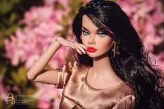 Bella (astramaore) Tags: fairest all poppy poppyparker integritytoys dollphotography doll spring brunette fulllips blueeyes chic beauty glam style