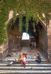 Roma (RM), 2018, Via di Monte Polacco (Fiore S. Barbato) Tags: roma lazio italy monte polacco via tunnel galleria
