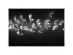 AM XI ([ Time - Beacon ]) Tags: tb abstract abstraction minimal minimalistic lightshadow blackandwhite blackwhite bw bnw monochrome monochromatic icm blur