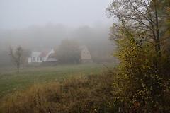 La maison forestière Hochwald (Excalibur67) Tags: nikon d750 sigma globalvision art 24105f4dgoshsma paysage landscape brouillard fog forest foréts arbres trees automne autumn vosgesdunord