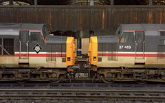 37430 and 419 Manchester Victoria (Get my anorak George) Tags: 374 englishelectric clubtrains1991 37419 37430 cwmbran manchestervictoria wallside