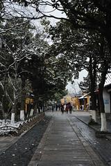 DSC_1868 (Hong Z) Tags: china nikond700 28300mmf3556 suzhou 苏州 travel garden 园林