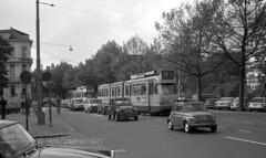 Via omleiding (railfan3) Tags: amsterdamsetrams amsterdamtrams tramstramlijnen trams1971 stadhouderskade omleidingroute gvb gemeentevervoersbedrijf amsterdam amsterdamse werkspoortrams gvb710 geledetrams electronen 7ggeledetrams amsterdams lijn16 1971 trams trolleys tramcars tram tramway triebwagen trammaterieel tramwagens trammetjes tramstellen tramwegmaterieel tramrijtuigen tramvoertuigen openbaarvervoer publictransport omleidingen geletrams ouderwetse oldtimers oldtrams vintagetrams classictrams klassieketrams retrotrams streetcars strassenbahnwagen strasenbahn streetscene oudewagens tramsautos fiatcars nederlandse nederland diversions reroutedtrams classiclightrail
