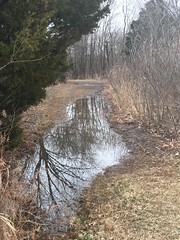 20190113-145254-2 (alnbbates) Tags: january2019 geocaching brokenarrow nsu water reflection