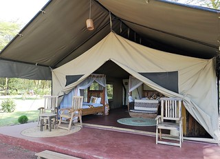 Africa Safari Lake Manyara tents (comfort)