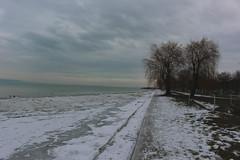 Téli Balaton III (Péter Vida) Tags: balaton sky natural winter ice freeze wood ég természet tél jég fagy fa snow hó balatonboglár water víz
