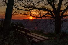 Auf dem Dasenstein (KaAuenwasser) Tags: dasenstein kappelrodeck sonnenuntergang sonne himmel wolken wolke farben rot gelb baum bäume bank sitzbank dorf gebäude häuser ast äste natur pflanzen stein steine fels felsen abend