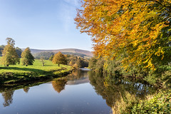 Autumn at Whitewell (Matthew_Hartley) Tags: whitewell autumn fall riverhodder river tree trees forestofbowland ribblevalley lancashire northwest england uk sony a7 iii a7iii fullframe 2870 2870mm