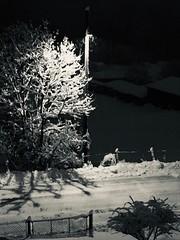 Nevica (CANETTA Brunello) Tags: neve natura