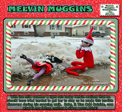 Baby Its Cold Outside (melvinmuggins) Tags: christmas elfontheshelf humour holidays snow coldoutside