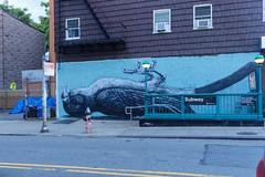Parrot (OliveTruxi (2 Million views Thks!)) Tags: newyork nyc nychos roa streetart urbanart ny unitedstates