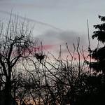 P2230674 thumbnail
