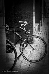 The Bike (Kool Cats Photography over 11 Million Views) Tags: blackandwhite bw bicycle wheel streetphotography street transportation oklahoma oklahomacity outdoor downtown