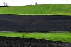 germogli (luporosso) Tags: natura nature naturaleza naturalmente nikond500 nikonitalia campagna campi terraarata plowedland scorcio scorci country countryside colline hills