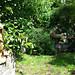 Maitreya Buddha, Quan Yin, Buddhas meditating, statues, lotus fountain, Japanese lantern, pink flowers, Japanese maple, willow, Tibetan prayer flags, bamboo fence, Broadview, Seattle, Washington, USA