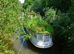 Das Naturschiff  - The Nature Ship (cammino5) Tags: mai 2018 naturschutz main naturschiff natureship niederrad staustufe hessen deutschland heimlicheliebe frankfurt