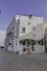 Puglia 2016-110 (walter5390) Tags: puglia apulia italia italy south sud meridione meridionale monopoli architettura architecture