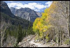 Deep Breaths (Nrbelex) Tags: canon dslr 5dmkiii nrbelex ef2470mm 2470mmf28 2470mm 2470mml 5diii bw polarizer bwcircularpolarizer circularpolarizer argb adobergb mountains colorado skypond skypondviaglaciergorgetrail skypondviaglaciergorge rockymountainnationalpark rmnp path trees fall yellow mountainside forest clouds autumn