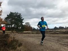 haarlerbergloop 10 km (78)