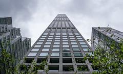 432 Park Avenue (Maciek Lulko) Tags: usa usa2018 432parkavenue rafaelvinoly skyscraper skyscrapers skyline architecture architecturephotos architektura architektur architettura architekturawspółczesna arquitectura archidose archdaily manhattan newyork newyorkcity nyc nyclandmark nikon nikond750 tamron1530