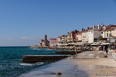 Piran (Slovenia) (darko.jakovac) Tags: nikon d750 nikond750 tamron 2470 tamron2470 piran slovenia slovenija slowenien adriatic balkans balkan europe european town city cities outdoor outdoors outside trip destination travel traveling vacation tourist tourism holiday explore explorers discover discovering perspective beautiful beauty pretty idyllic scenic scenery unique perfect superb magnificient stunning impressions view viewpoint ngc season postcard wallpapper sea sky swim swimming roam sun sunny bright activities relax seasonal freedom vibrant colorful colors environment remembrance building structure architecture coast