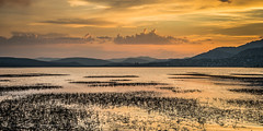 Yellow sunset (Ignacio Ferre) Tags: embalsedesantillana santillanareservoir embalse reservoir lago lake manzanareselreal madrid españa spain paisaje landscape sunset puestadesol naturaleza nature agua water