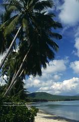 Koh Phan-Ngan (blauepics) Tags: thailand ko koh phangan island insel beach strand coastscape küste landscape landschaft meer sea water wasser white weiser sand palm trees palmen 1994 südostasien southeast asia clouds wolken