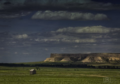 Views forever (Dave Arnold Photo) Tags: wy wyo wyoming torrington lusk river valley mesa bluff scottsbluff tree eastern desert image pic us usa picture severe photo photograph photography photographer davearnold davearnoldphotocom scenic cloud rural urban summer top wet canon 5d mkiii 100400mm huge big park goshencounty landscape nature outdoor weather cloudy sky season rock barn ruins ranch farm cattle highway hwy 85