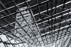 Bruuns Galleri (michael_hamburg69) Tags: århus aarhus dänemark danmark denmark midtjylland jütland glasdach glass roof lines monochrome mall einkaufscenter