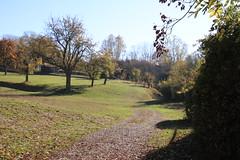 Autumn walk 2018 ### Herbstspaziergang 2018 (Mc Steff) Tags: autumn walk herbstspaziergang 2018 autumnwalk herbst spaziergang baum bäume tree trees blatt blätter laub foilage leaf leaves