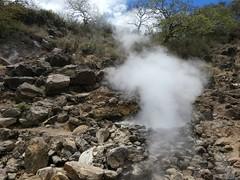 Hot spring (Linda DV) Tags: lindadevolder africa 2018 lumix travel geotagged nature kenya fauna baringo lake
