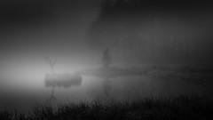 Måsatjernet (Vlash) Tags: canon760d foggy calm sigma nature water freshwater bw sigma1835f18dchsmart canon norway blackwhite november måsatjernet sigmaart tomåsan forest nesodden mirror akershus landscape fog mirrored misty mist reflection pond