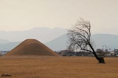 Gyeongjn Bulguksa, - South Korea