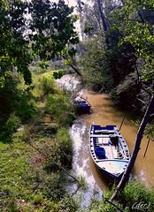 ___ barche a riposo! (erman_53fotoclik) Tags: samsung barche riposo canale natura piante verde rigagnolo canaletta j530f erba