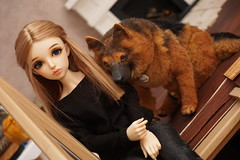 Clary and Arco (Jelezrael) Tags: bjd doll puppe 14 msd fairyland minifee niella deutscher schäferhund hund dog haustier pet