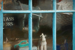 How much is that doggy in the window (Sh4un65_Artistry) Tags: painteffect textured ropebasketsetc topaz windowsanddoorsetc painterly toys textiles digitalart topazimpression gardening thethomasshop digitalpainting paintedphoto topaztextureeffects clothes stilllife places artwork