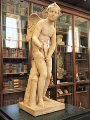 Cupid (Brule Laker) Tags: london bloomsbury england uk artifacts museums britishmuseum unitedkingdom greatbritain britain europe