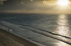 Brazil - Jericoacoara (Nailton Barbosa) Tags: jijoca de jericoacoara jeri nikon d800 sunset brasil brazil brasile brasilien ceará dunes beach ブラジル セアラ 日没 ニコンd800 砂丘 ビーチ 巴西 日落 沙丘 海灘 бразилия сеара закат дюны пляж бразилія захід сонця дюни tramonto dune spiaggia brésil coucher soleil plage puesta del sol dunas playa sonnenuntergang dünen strand البرازيل سيارا غروب الشمس نيكون الكثبان الرملية الشاطئ solnedgang sanddyner برزیل سارا خورشید تپه ساحل brazilië zonsondergang duinen