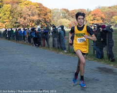 2018.11.10_CROSSCNTRY_WomensMens_VanCortlandtPark_JesiKelley-804 (psal_nycdoe) Tags: menscrosscountry nycpsal nycpsalsports nycsports newyorkcitypublicschoolsathleticleague psal2018crosscountry psal2018crosscountrychampionships psalcrosscountry teenagersplayingsports womenscrosscountry highschoolsports kidsplayingsports 201819 cross country psal public schools athletic league van 201819crosscountrycitychampionships xtry xcountry nycdoe new york city high school championships vancortlandtpark cortlandt jesi kelley jessica nyc newyorkcity newyork usa department education boys girls championship