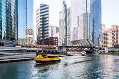 Chicago RIver DSC04684-Edit (nianci pan) Tags: chicago illinois urban city cityscape architecture buildings river chicagoriver urbanlandscape landscape sony sonya7rii nianci pan