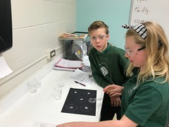 IMG-1546 (stpatstacoma) Tags: crystals science sciencelab 6thgrade