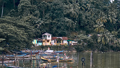 Padang riverside (Balthus Van Tassel) Tags: padang sumatra indonesia river palms village boats