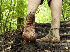 Woodland steps (Barefoot Adventurer) Tags: barefoot barefooting barefooter barefoothiking barefeet barefooted baresoles barfuss wrinkledsoles woodland woodlandsoles muddysoles earthing earthsoles earthstainedsoles earth healthyfeet connected callousedsoles autumnbarefooting anklet arch roughsoles ruggedsoles leathertoughsoles