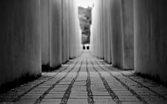 Mahnmal Berlin schwarz-weiss (Jenke-PhotozZ) Tags: motive mahnmal memorial monochrome nocolor mylove germany geometric geometrisch berlin berlinstyle blackandwhite symmetrical symmetrie schwarzweiss city canon eos700d beton canoneos hauptstadt holocaust holocaustmahnmal perspective photo photography memory symmetric architecture architektur abstrakt stones view visitberlin iloveberlin straight abstract way labyrinth