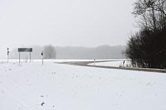 Kurv (Jaan Keinaste) Tags: pentax k3 pentaxk3 eesti estonia harjumaa raevald maantee road talv winter udu fog lumi snow patikaküla